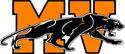 Medina Valley High School - Boys' Varsity Football