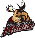Alamosa High School - Alamosa Varsity Football