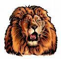 Arlington High School - Arlington Varsity Football