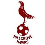 Hillgrove High School - Boys Varsity Soccer