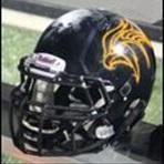 Fennville High School - Fennville Varsity Football