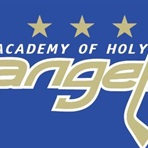 Academy of Holy Angels High School - Varsity Boy's Hockey