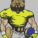 Warren High School - Warren Varsity Football