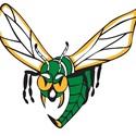 Edina High School - Girls Varsity Lacrosse