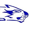 Wilton High School - Wilton Varsity Football