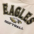 Bald Eagle Area High School - Bald Eagle Area Varsity Softball