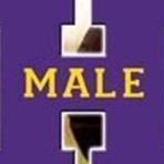 Louisville Male High School - Varsity Bulldog Football