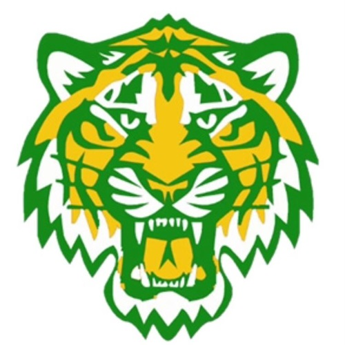 Bolivar Central High School - BCHS Varsity Football