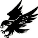 Russell Jones Youth Teams - Volcano Vista Freshmen