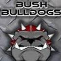 Reagan High School - BUSH BULLDOGS
