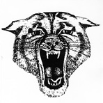 Blair-Taylor High School - Boys Varsity Football