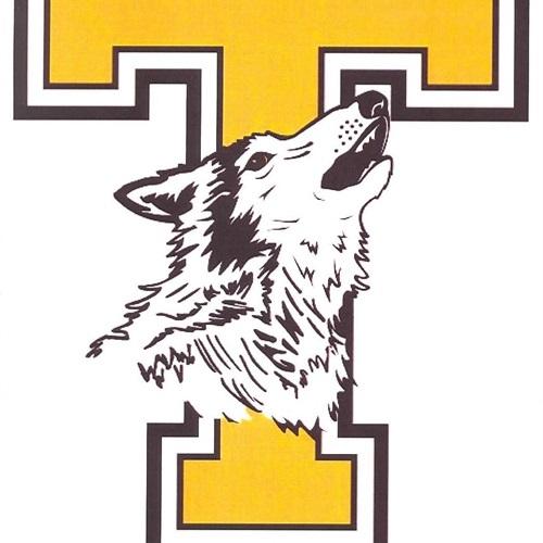 Tomah High School - Boys Varsity Baseball
