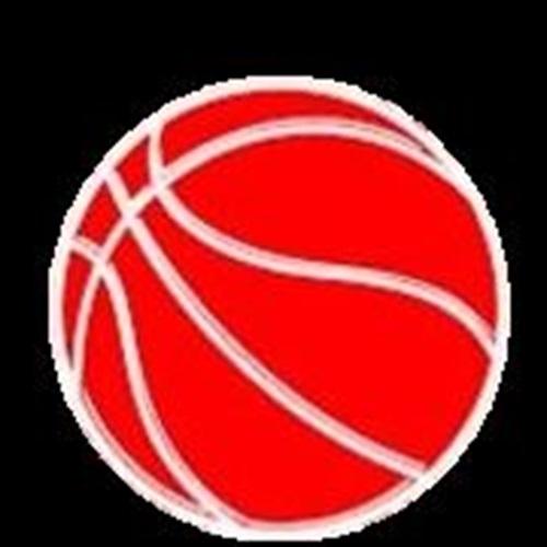 TEAM Basketball - 2018 - Rochester Hills, MI