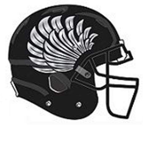 Mount Healthy High School - Boys Varsity Football