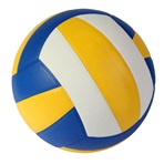 Leonard High School - Girls' Varsity Volleyball