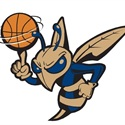 Essex High School - Boys Varsity Basketball