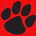 Brookings High School - Brookings Bobcat Varsity Football