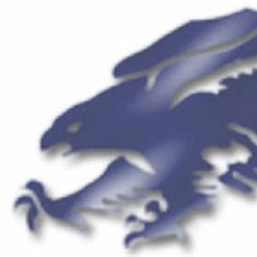 Austintown-Fitch High School - Boys Varsity Football