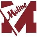 Moline High School - Moline Sophomore Baseball