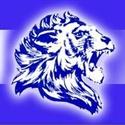 Lisle Sr. High School - Varsity Football