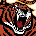 Morse High School - Morse Tigers