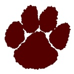 Stuarts Draft High School - Boys' JV Football
