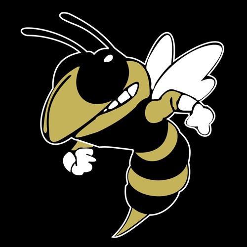 T.L. Hanna High School - T.L. Hanna Varsity Football