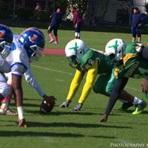 Springfield Gardens High School - Springfield Gardens Varsity Football