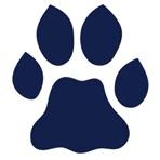 Saint Ignatius High School - Boys Varsity Football