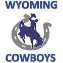 Wyoming Youth Football - Cowboys - 6th Grade
