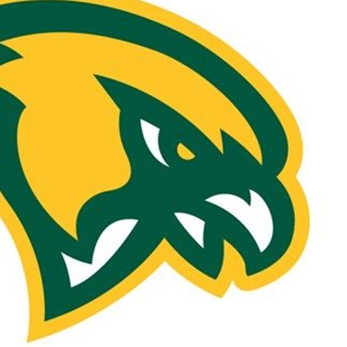 Fitchburg State University - FALCON FOOTBALL