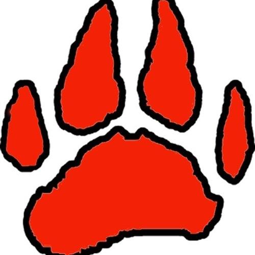 Laingsburg High School - Laingsburg Boys Soccer
