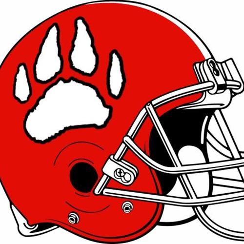 Laingsburg High School - Boys Varsity Football