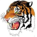 Marshall High School - Marshall Tigers Varsity