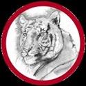 DeQuincy High School - Boys Varsity Football