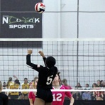 Daisy Dinkens Volleyball - Daisy Dinkens