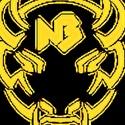 New Buffalo High School - Boys Varsity Football