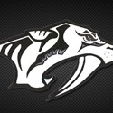 Plymouth High School - JV Football