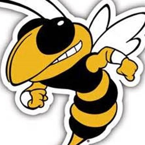 DYJ Jackets Gold - 6u Rockdale Bulldogs