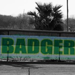 Bishop High School - Badger Softball