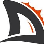 Durham Dolphins Football Club - Senior OPFL