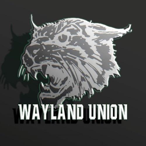 Wayland Union High School - Freshman Football