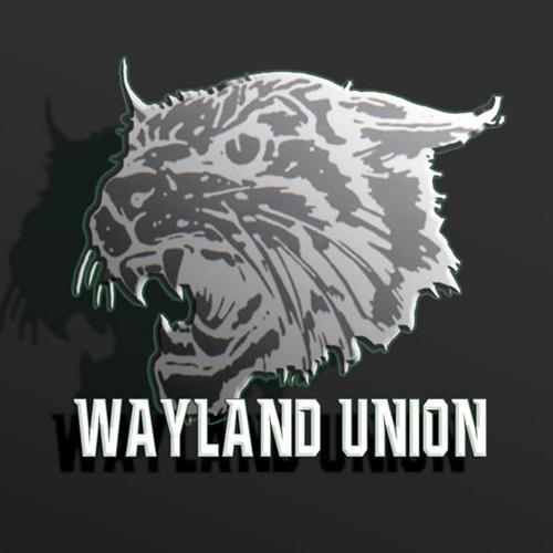 Wayland Union High School - JV Football