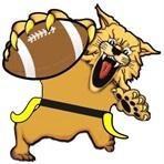Wharton High School - Wharton Varsity Football