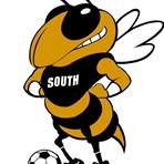 Hinsdale South High School - Girls' Varsity Soccer