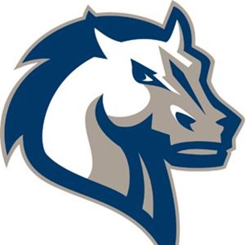 Manchester Valley High School - Boys Varsity Lacrosse