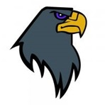 Newcastle Blackhawks - Newcastle Blackhawks Football