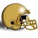 Bishop Feehan High School - Varsity Football