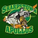Sharpstown High School - Sharpstown Varsity Football