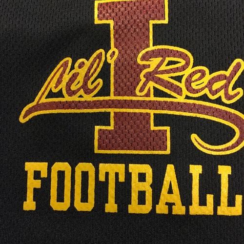 Ithaca High School - Boys Varsity Football